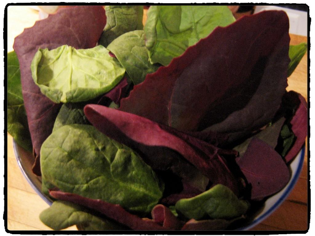 Heirloom Spinach - Vegetables - Undercover Chef - Nicolette Felix